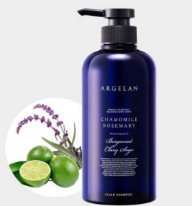 10. Argelan Balancing Moist Scalp Shampoo (500 ml)