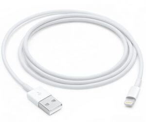 1. Apple Lightning to USB Cable
